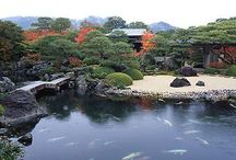 Japanese garden / From traditional to modern, the beauty of Japanese gardens