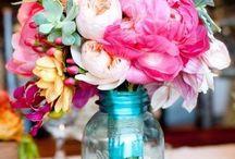 Flowers / Красивые цветы
