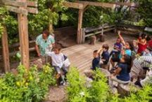 Feature - Outdoor Classroom / by Cameron R. Rodman