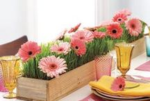 Spring Decorating Ideas / Give your home that freshness feeling this Spring