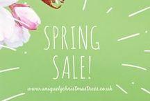 Christmas Trees on SALE! / Spring SALE has ended - Stay tuned for the Summer SALE!!