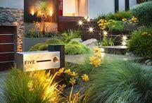 Gardens Front Yard