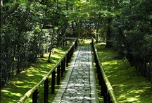 garden paths, gardens, patios / by Evelyn Chow