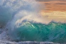 Nature--The Sea / by Evelyn Thiele