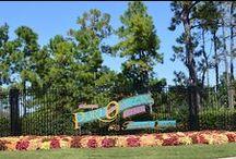 Walt Disney World Resort Photo Tours/Photo Walks