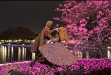 Epcot Flower and Garden Festival 2014 / Photos and video of the Epcot Flower and Garden Festival at Walt Disney World.