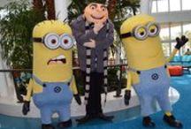 Universal's Cabana Bay Beach Resort / Universal's Cabana Bay Beach Resort
