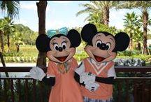 Dining at Walt Disney World / Restaurant reviews at Walt Disney World