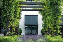 French Modern Garden Design