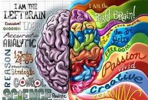 Anatomy of the Brain / Biology 101 and some fun facts about your brain