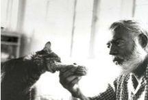 Dans les pas d'Hemingway