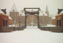 White winter world