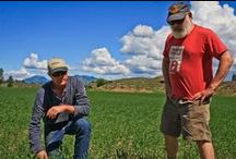Visiting with Dr. Weil / We had the pleasure of visiting with Dr. Andrew Weil. Super nice guy and we had lots to talk about. We showed him our grain fields and showed him our operations.