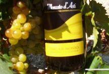 vendemmia 2012  Moscato