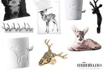 Home decor / Find inspiration and products to your home from miinto.no <3