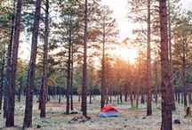Places to Camp / Places and Information on Where To Camp in the US and Internationally