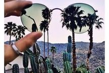 Shades N Palms / This oh-so-Summery board is all about stunning sunglasses and luscious palms... or better off: both!!!