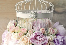 Caged Beauty / by Delicate Elegance Events