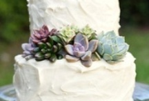 Proteas & Succulents / by Delicate Elegance Events