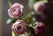 Love gardening <3