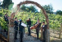 | Samaha Wedding. / Details of our magical day || Nella Terra Cellars || Sunol, CA