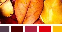 Colors! / beautiful color combinations