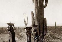 Native Beings