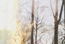 Splendor. / Inspired living. / by Lauren Levine