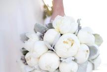 weddings / by Emily Finley