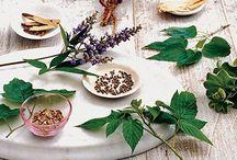 Natural Remedies / by Kate Scoggins