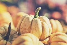 { autumn }