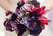 Wedding Inspiration and Decor / Inspiration, DIY, colors, graphics and all things wedding related that we think are utterly fantastic.