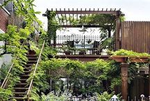 Rooftop Garden / Living in an urban environment doesn't mean you have to lose all exterior space. Why not start a rooftop garden? The bees, and neighbors will thank you.