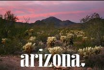 arizona / by Spell & the Gypsy Collective