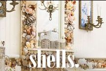 shells / by Spell & the Gypsy Collective