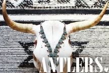 ANTLERS / by Spell & the Gypsy Collective
