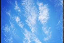 nature's beauty - animals and landscapes, the sky / by Shelley Scribner