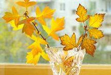It's a Autumn Affair