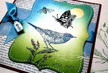 CARDs - SU Nature Walk (retired)