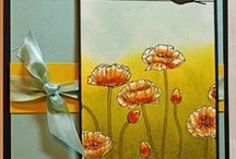 CARDs - Pleasant Poppies