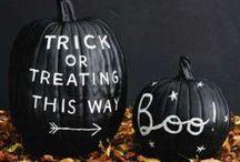 Fall & Halloween / by Courtney Amero