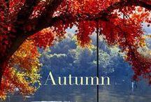 Autumn / by Ana Gavino