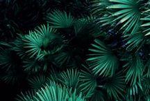 Colour and Texture / by Idur Rogdur
