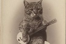 Old Cats / Cats in vintage & retro art, photography, ads