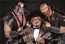 WWF - World Wrestling Federation / My favorite wrestlers & characters from my childhood / by Jonathan Coe