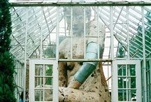 {-serre-} / Serre, jardin d'hiver, conservatories, verande, orangerie,