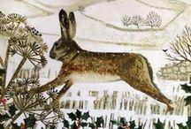 Hare / by Deb Elen