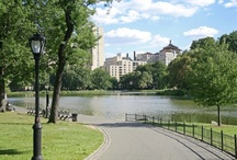 New York City / New York City is a wonderful city to visit and play, or to hold a meeting, wedding or reunion with many sites to see.