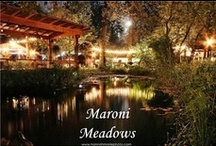 Maroni Meadows / 9217 172nd St SE  Snohomish, WA 98296 (425) 231-5030 / by My Snohomish Wedding