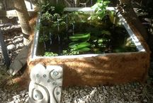 Water feature / Small pond